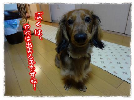 2012_3_30_4_convert_20120330231236.jpg