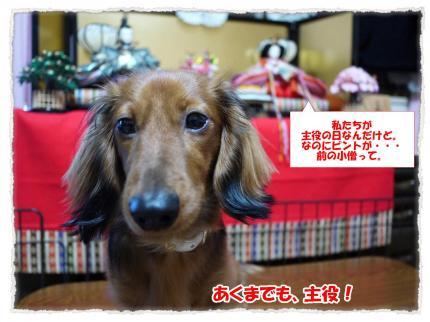 2012_3_3_1_convert_20120303233530.jpg