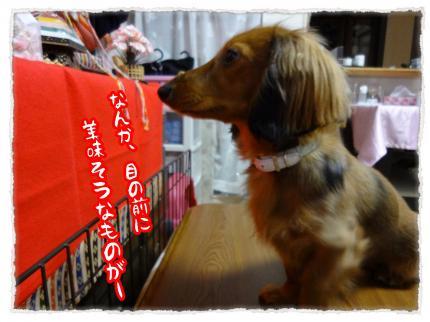 2012_3_3_3_convert_20120303233614.jpg