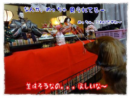 2012_3_3_4_convert_20120303233631.jpg