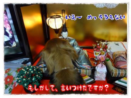 2012_3_3_8_convert_20120303233754.jpg