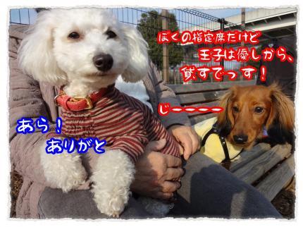 2012_3_4_6_convert_20120304232310.jpg
