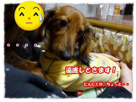2012_4_1_3_convert_20120401215128.jpg