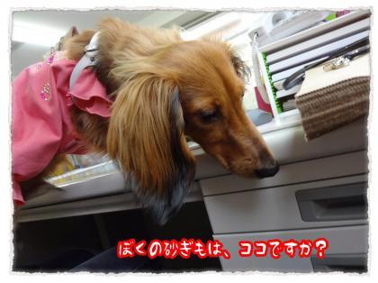2012_4_21_5_convert_20120421225729.jpg