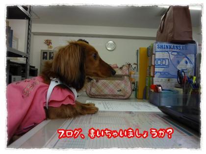 2012_4_21_6_convert_20120421225744.jpg