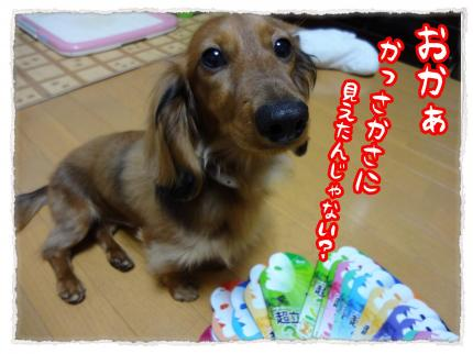 2012_4_24_3_convert_20120424224305.jpg