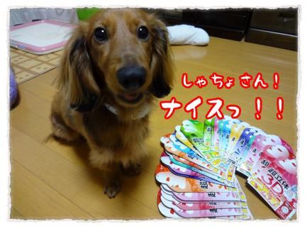 2012_4_24_4_convert_20120424224324.jpg