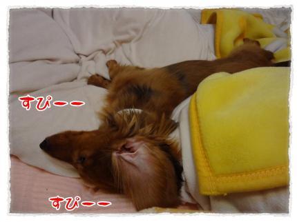 2012_4_25_5_convert_20120425225230.jpg