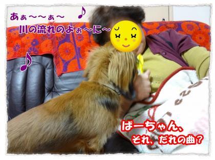 2012_4_4_1_convert_20120404232330.jpg