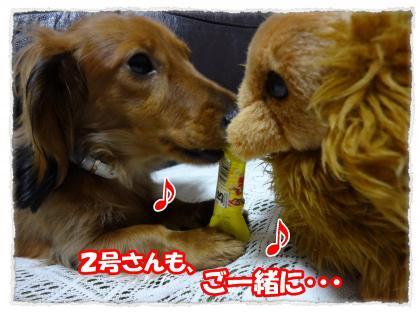 2012_4_4_2_convert_20120404232406.jpg