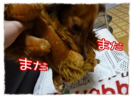 2012_4_5_6_convert_20120405224003.jpg