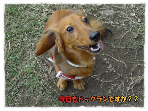 347_2011_9_25_1_convert_20110925192518.jpg