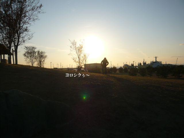 1201174.jpg