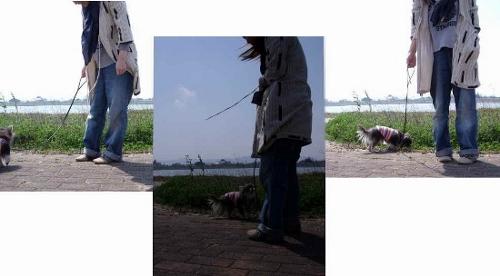 散歩 (550x304) (500x276)