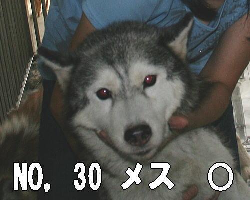 20120726210409ab0.jpg