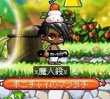 Maple141212_233403.jpg