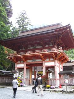 hiyoshitaisya2.jpg