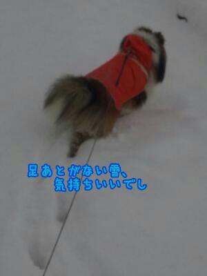 fc2_2014-02-06_21-06-35-486.jpg