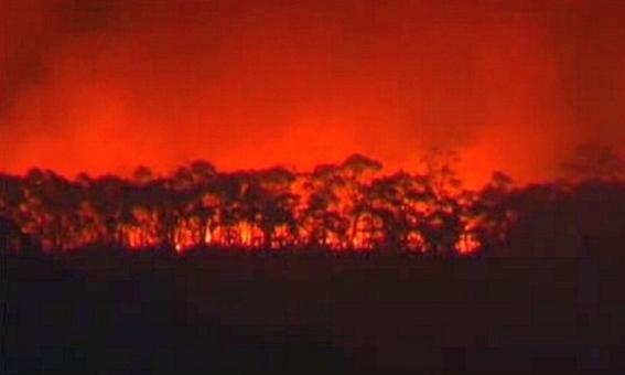 ニューサウスウェールズ州 山火事 写真