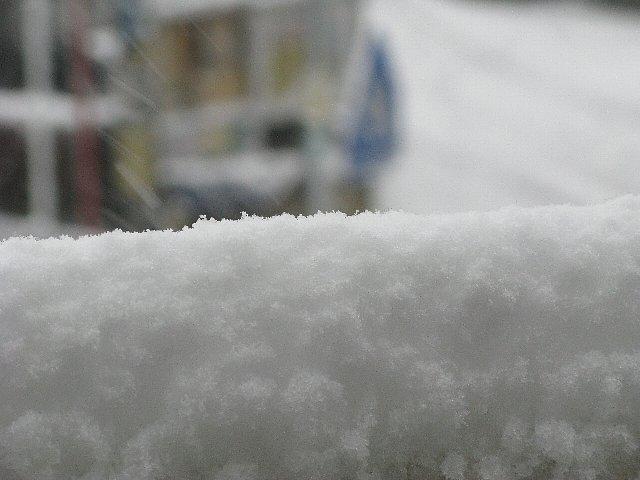 2008.02.03 ゆき.jpg