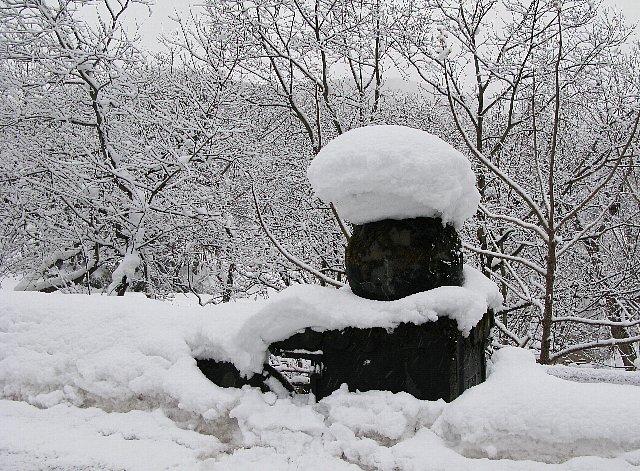 2008.02.05 かみくわながわ 欄干の雪.jpg