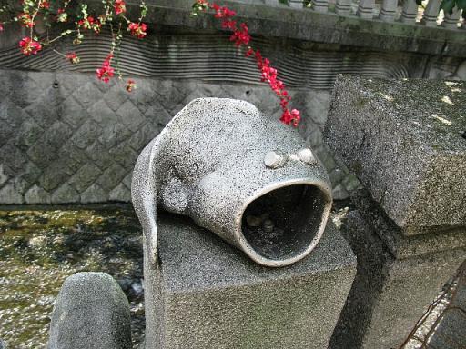 糸川遊歩道 むつごろう?
