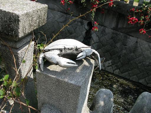 糸川遊歩道 渡り蟹