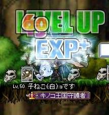 Maple120325_105530.jpg