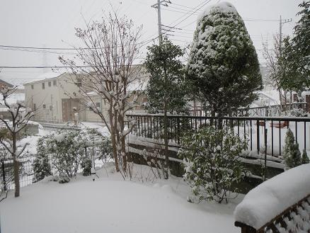 雪景色 001