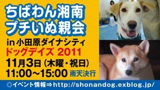inuoyakai_odawara_320x180.jpg