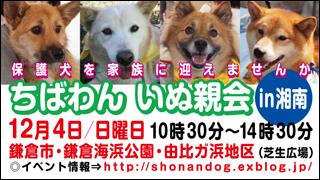 shounan20111204_320x180.jpg