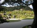 足立美術館の庭5