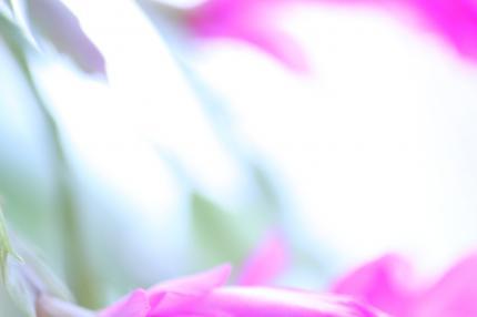 004_convert_20120204234455.jpg