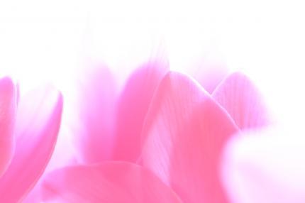 007+(3)_convert_20120212221313.jpg