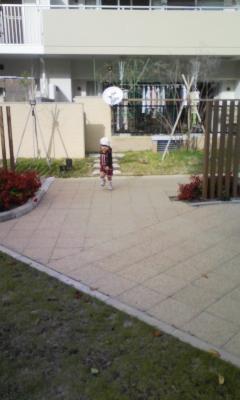 DVC00036_20111030144858.jpg