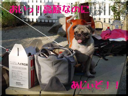 秋キャンプ♪那須高原へ8
