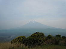 2011060503.jpg