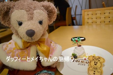 2013-11-18花 11-29用 (12)