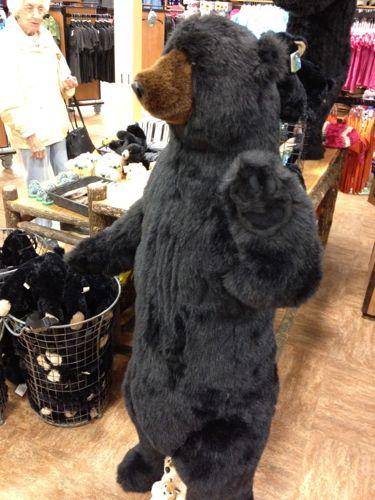 ヨセミテ名物の熊