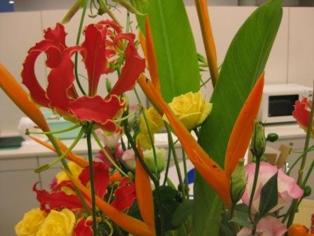他にもこんなお花が