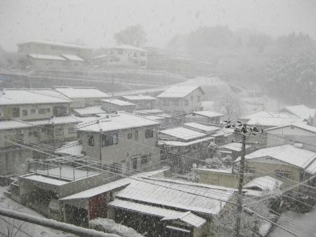 本格的な大雪…