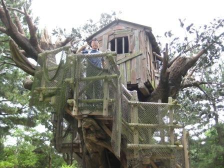トムソーヤの木の上のお家