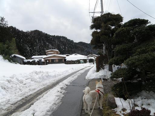 yuki2101.jpg