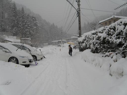 yuki2141.jpg