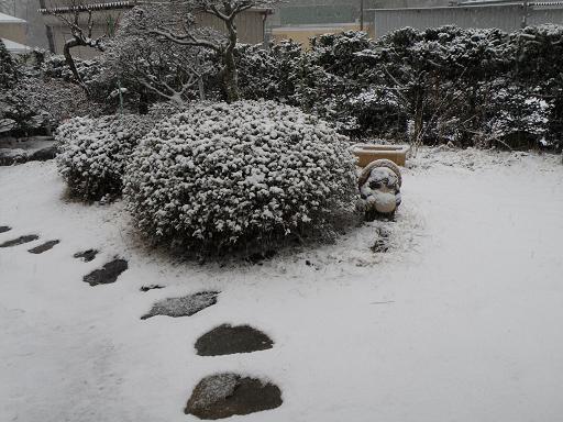 yuki241.jpg