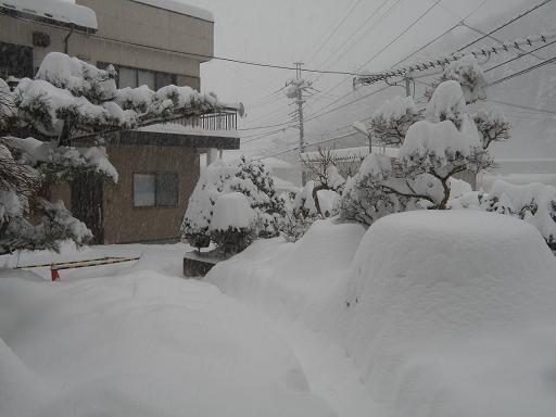 yuki281_20140208160245af7.jpg