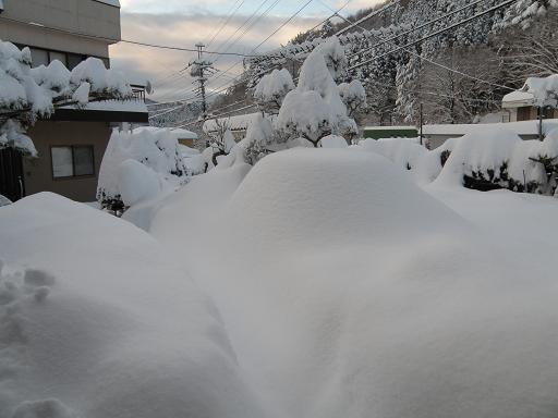 yuki291_20140209212714dfa.jpg