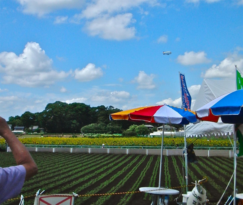 きよせひまわりフェスティバルと飛行船
