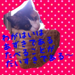 IMG_1622_convert_20120626091341.jpg