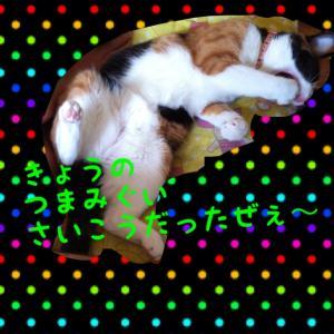 IMG_2085_convert_20120803082617.jpg